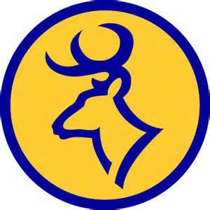 Pg10_Roscommon Bucks Logo